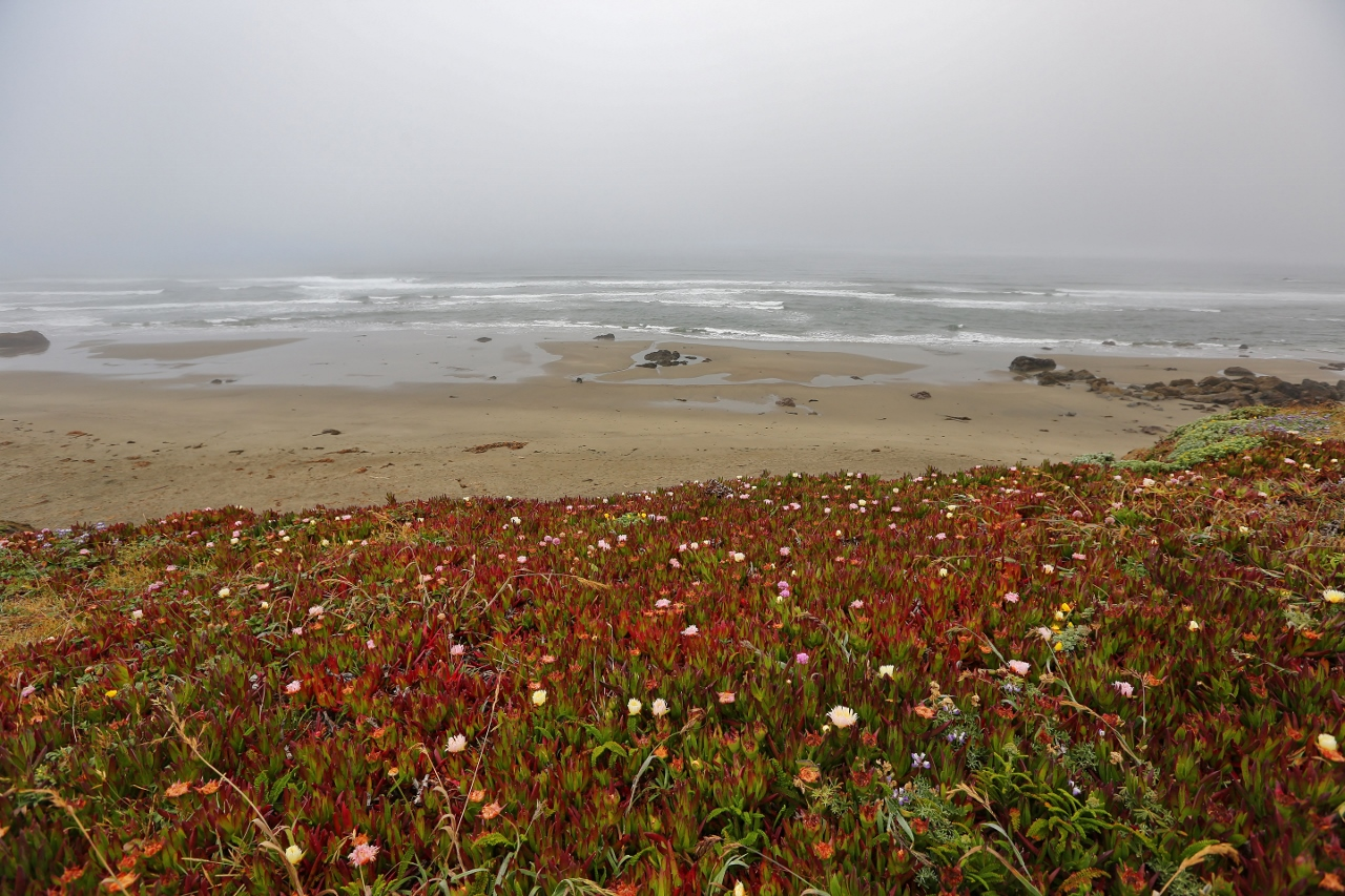 CA Coast 013 (1280x853)