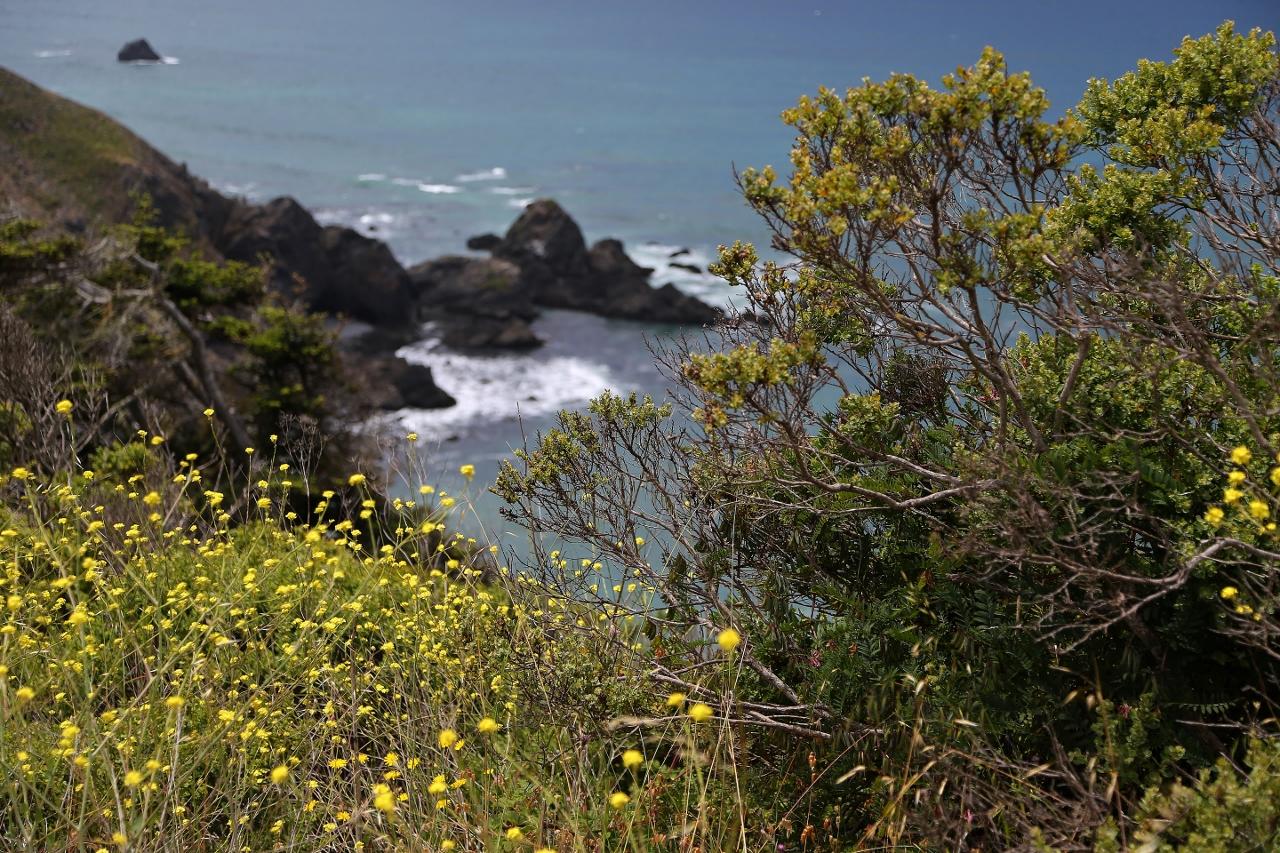 CA Coast 083 (1280x853)