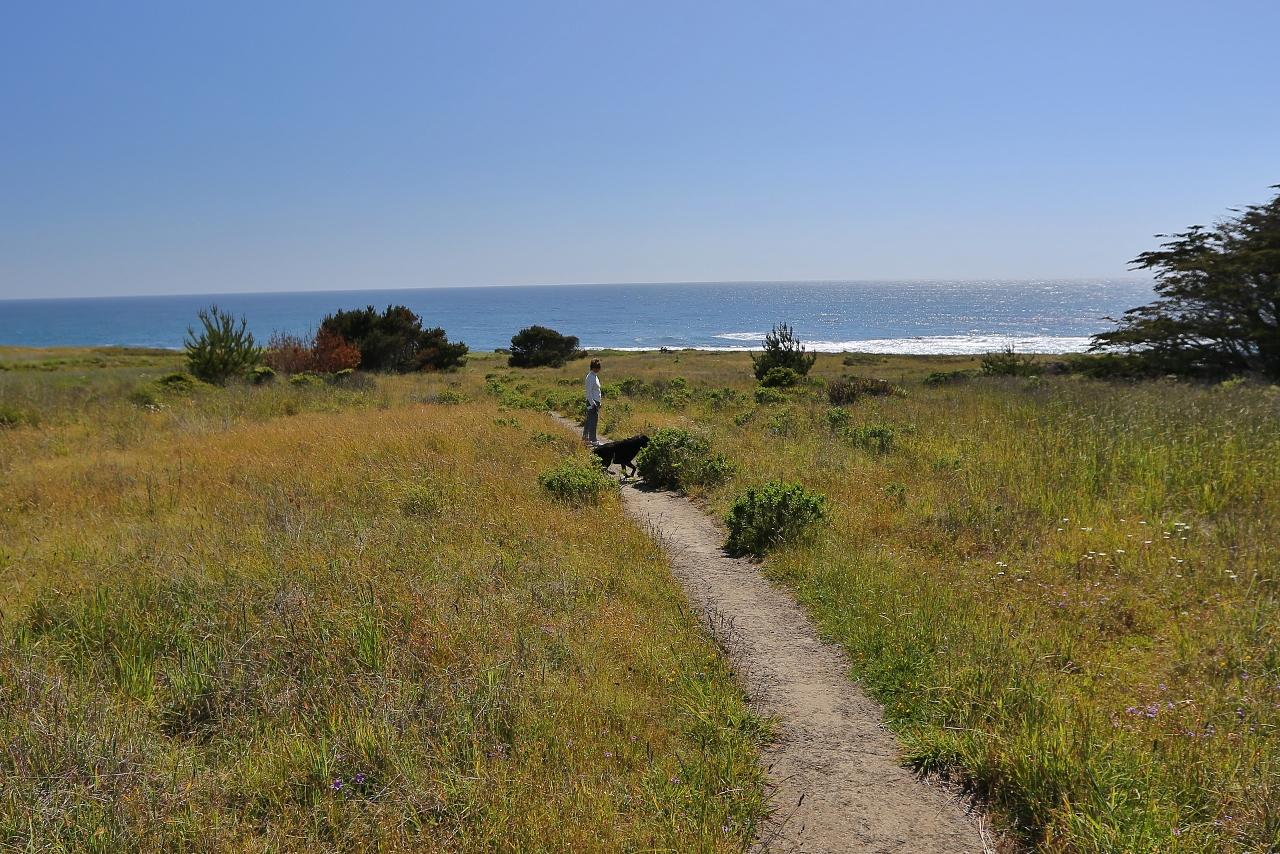 CA Coast 117 (1280x854) (1280x854)