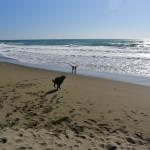 CA Coast 170 (1280x626)
