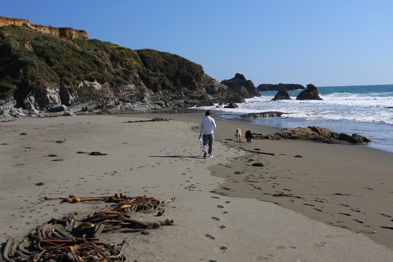 CA Coast 208 (1280x854)