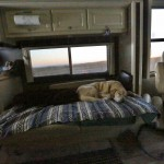 Z-CAMPGROUND (4)