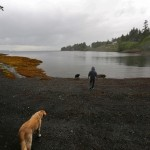 Max and Chloe want to go for a swim at Totem Bight, Ketchikan.