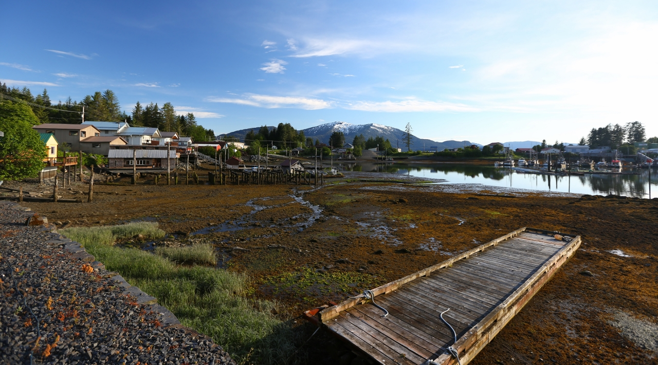 Wrangell harbor at low tide.