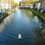 CanalSwan