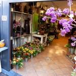 Flower shop, Delft, Holland