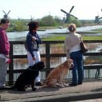 Kinderdijk Windmills 010