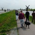 Kinderdijk Windmills 129
