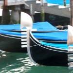 Venice Day 3b 061