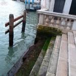 Venice Day 3b 125