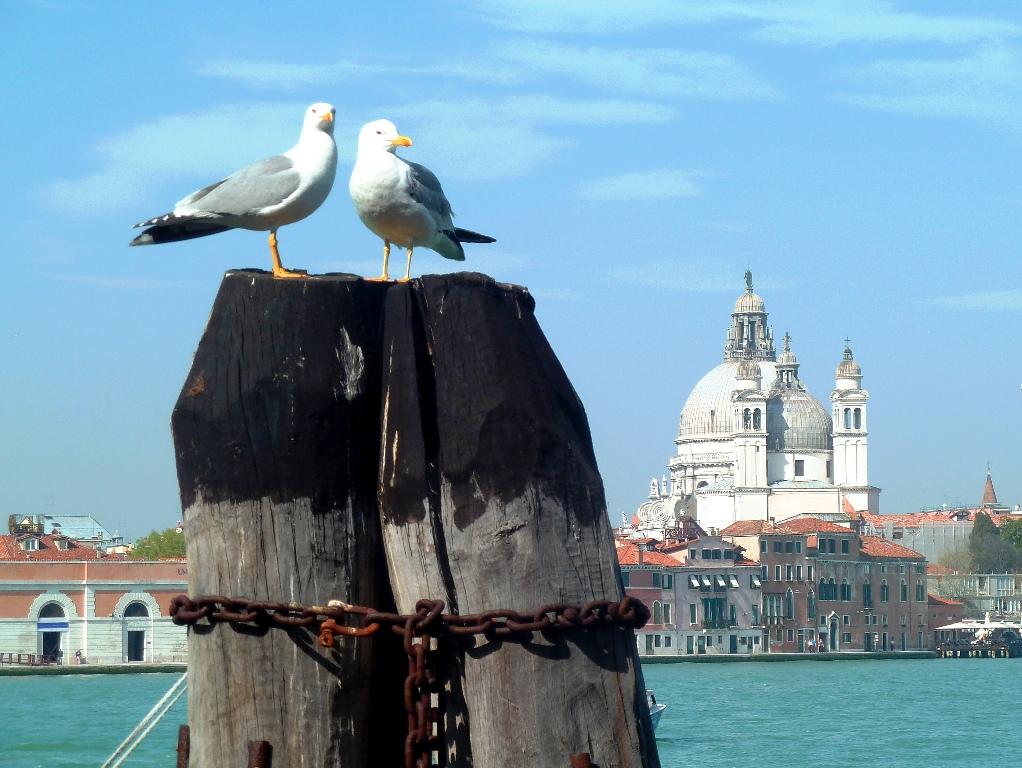 Venice Day 3b 395